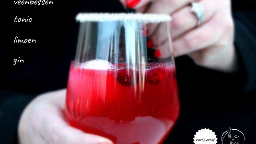 Gin-tonic met veenbessen